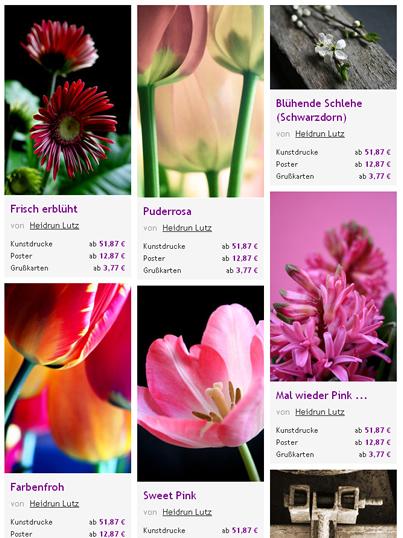 Digitalart, Blumen, Bunt, Dekorativ