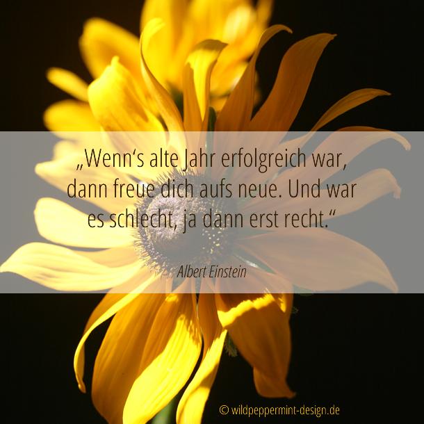 Zitat albert Einstein, Jahresabschluss, Motivation / © wildpeppermint-design.de