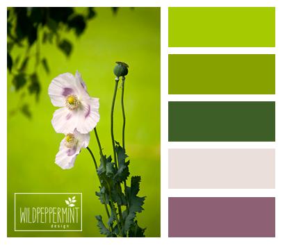 Frühlingsgrün, Farbpalette Grasgrün, grüntöne, farbinspiration