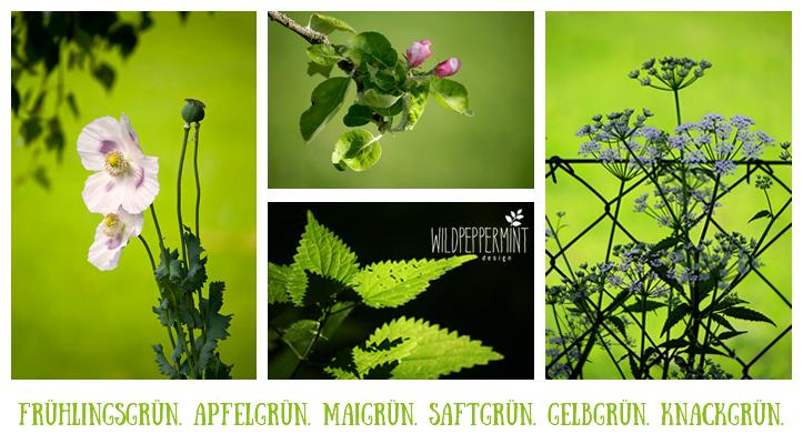 Frühlingsgrün, grüne Naturfotos, nautr im frühling, wildblumen, grasgrün, apfelgrün, grün früs büro, grün in der werbung