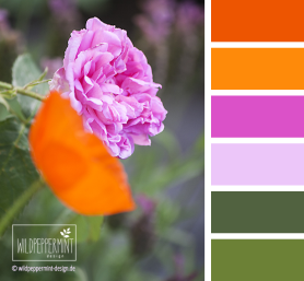 Farbpalette Rose-Mohn, wildpeppermint-design.de