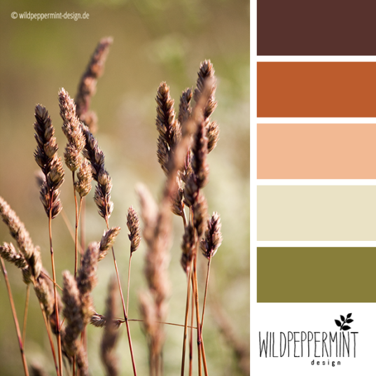 Farbpalette Sommergras, wildpeppermint-design.de