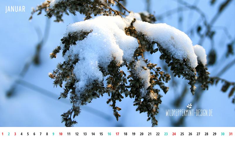 Kalenderblatt Jan 400 x800 px, wallpaper smartphone, gratis wallpaper januar, wildpeppermint-design.de