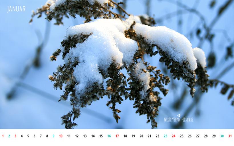 Kalenderblatt Januar 2016 1680x1050, Wallpaper gratis download, Kalenderblatt download gratis, Janaur 2016, © wildpeppermint-design.de, Winter