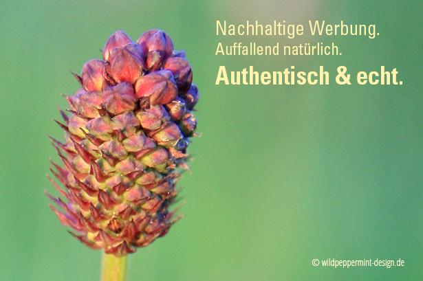 Nachhaltige-Werbung, authentisch, echt, nachhaltige werbung hat mehrwert, wildpeppermint-design.de
