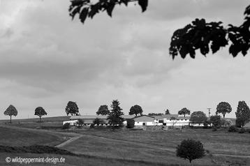 reiterhof-sw, gehöft, auf dem land, sw-foto, wildpeppermint-design.de