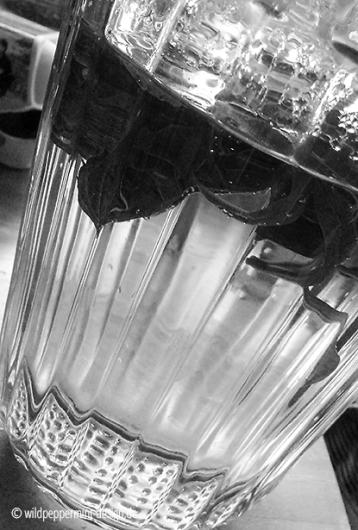 teatime, zeit für tee, tee mit frischen kräutern, sw-foto, wildpeppermint-design.de