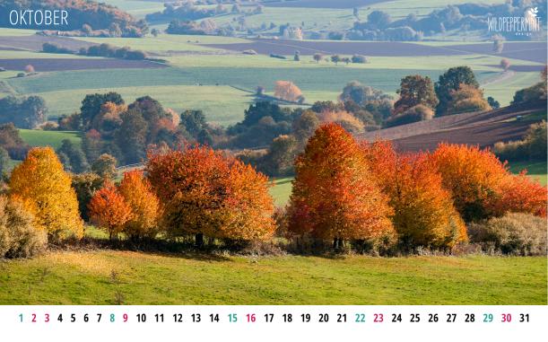 Gratis Wallpaper, kalenderblatt-oktober-2016-1680x1050 © wildpeppermint-design.de