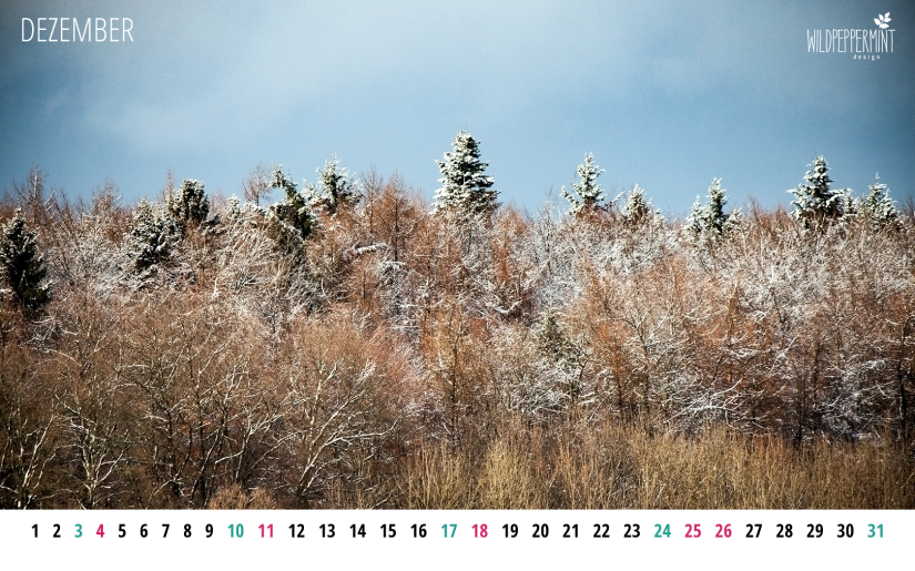 Gratis Wallpaper Winterlicher Wald, Dezember 2016, 1680x1050, © wildpeppermint-design.de