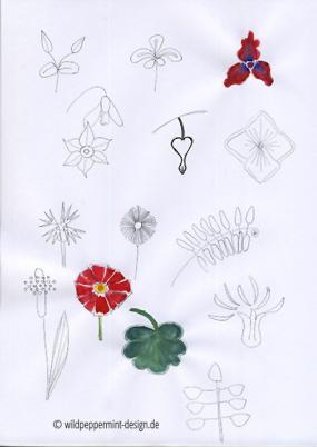 skizzen, kritzeleien blumen, blüten, pflanzen, blätter, ideensammlung muster floral, bleistiftskizzen blüten, wildpeppermint-design.de