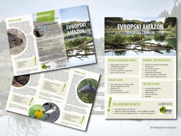 Flyer und Plakat, Umweltschutz, Schutz Donau Serbien, AWP Donauprojekt, Road-Tour zum Schutz der Donau, wildppeprmint-design.de