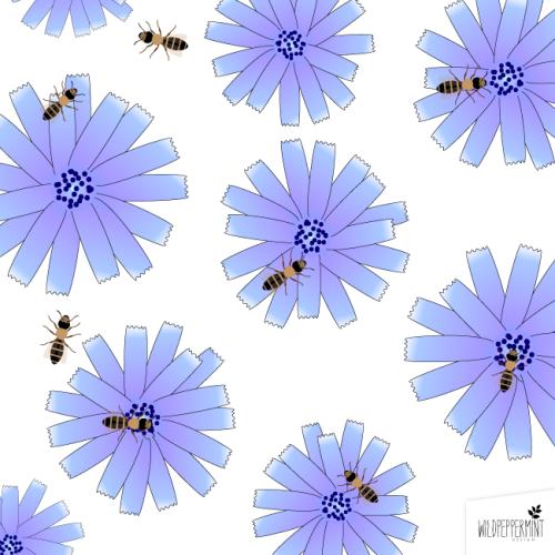 Wildblumen-fuer-Wildbienen, Wildbienen und Wegwarte, © wildpeppermint-design.de