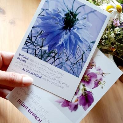 Grußkarten, Postkarten, Kundengrußkarten, Dankeskarten, umweltfreundliche Grußkarten, © wildpeppermint-Design.de