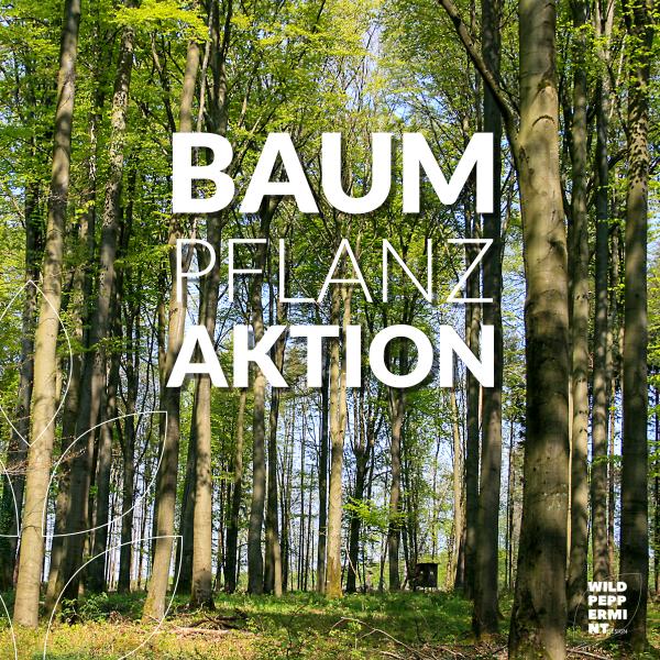 Baumpflanzaktion, Waldsterben, Plant a tree, Wald Hilfe, Klimawandel, wildpeppermint-design Engagement